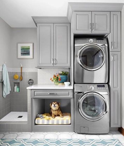 Kutyalak a mosókonyhában