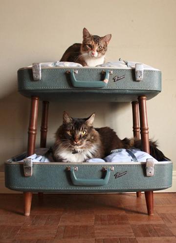 Vintage cica ágy